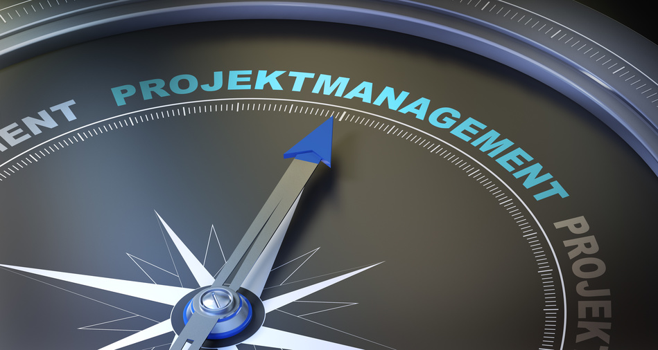 Programm- & Projektmanagement